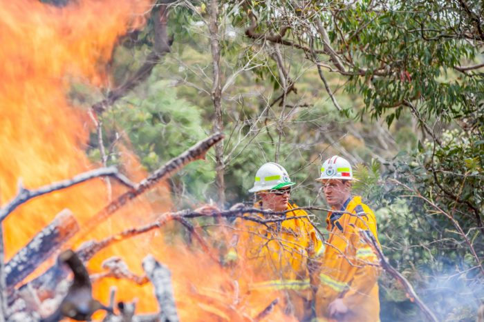 Australia's road to resilience from natural disasters